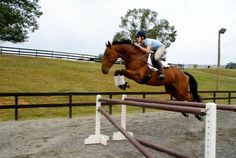 Ten Habits of Highly Successful Riders