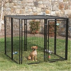 Dog Kennel Welded Wire Cottageview is good looking kennel to fit any backyard. This dog kennel is made of rust resistant black powder coated finish. keep your pet safe in secured area. Dog Kennel Welded Wire Cottageview comes with sun block top to keep your pet cool and comfortable.