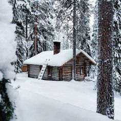dailymayhem: It's either beach, or snowy cabin. Either would do...