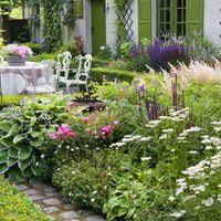 Garden Ideas, Border ideas, Perennial Planting, Perennial combination, Summer Borders, Salvia Caradonna, Astilbe Detuschland, Geranium Rozanne, Geranium Sanguineum, Hosta crispula