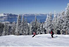 Lake Tahoe tree skiing