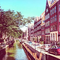 My time in Amsterdam