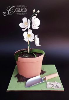 Orchid Potted Plant Cake by Cindy's Cake Creations Fancy Cakes, Cute Cakes, Fondant Cakes, Cupcake Cakes, Flower Pot Cake, Orchid Cake, Dad Cake, Garden Cakes, Cake Shapes