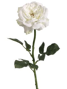 26inch Sophia Open Rose in White Cream | Afloral.com silk flowers wedding flowers silk roses white wedding only $5.29
