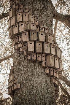 birdhouses Villa Montalvo birdhouse artwork Birdhouse artwork called Control Tower by artist Cameron Hockenson. control_tower/ Villa Montalvo, Saratoga, CA Outdoor Projects, Garden Projects, Outdoor Art, Outdoor Gardens, Dream Garden, Garden Art, Blue Garden, Bird House Feeder, Bird Feeders