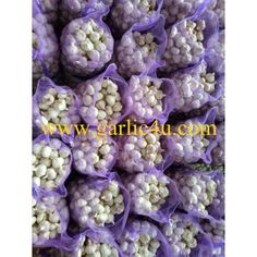 10kg/mesh bag, with or without label Fresh Garlic, Hue, Mesh, China, Shelf Life, Bulbs, Period, September, Label