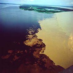 Encontro das Águas do Rio Negro e Solimões - A verdadeira prova da existencia…