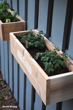 Paint-a-fence-how-to-make-hanging-garden-fence-cedar-planter - Thrift Diving -47