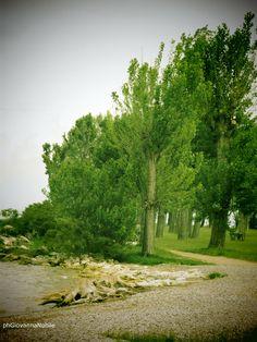 Scorcio del lago di Garda, ripreso dalla PowerShot N