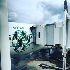JL914(JAL914) F-class OKA -> HND in 201608 #travel #flight #jal #okinawa #japan