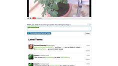 Geef plant @JarroseLaPlante water via twitter - dat je met een Arduino veel kunt maken is inmiddels wel duidelijk - meest fantasierijke idee is wel dat je een plant water kunt geven om hem een tweet te sturen
