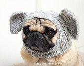 Dog Hat - Elephant Hat