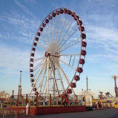"""London Eye"" from Dubai Global Village, Eye Photography, London Eye, Uae, Fair Grounds, Pictures, Travel, Photos, Viajes"