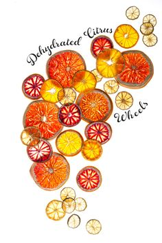 Dehydrated Citrus Wheels. Used for garnish or tea and lots of other stuff!