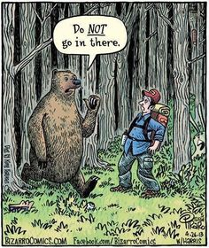 Bear's really dirty jokes 4 December 2017 … Funny Cartoon Pictures, Cartoon Jokes, Funny Cartoons, Funny Comics, Funny Memes, Cartoon Posters, Meme Pictures, Adult Cartoons, Cartoon Tv