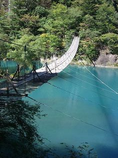 treeshaping suspended bridge Rope Bridge, Outdoor Furniture, Outdoor Decor, Japan, Nature, Bridges, Warriors, Image, Naturaleza