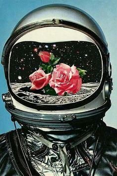 Rosas en el espacio