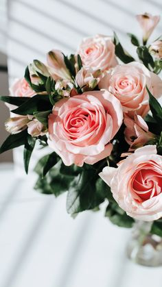 Flowers iPhone Wallpaper Lockscreen