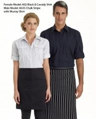 half-apron