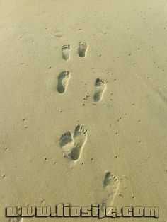 Ray Bradbury - Ognuno deve lasciarsi qualche cosa [..] ✿◕ ‿ ◕✿ #RayBradbury, #segno, #eredità, #impronta, #liosite, #frasibelle, #sensodellavita, #ItalianQuotes, #frasi, #perledisaggezza, #perledacondividere,
