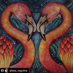 Floresta Encantada Florestaencantada2 Instagram Profile