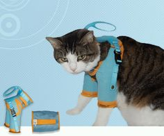 See the Cat Grooming Harness that protects you from scratches & bites here, from Healthy Kitty.