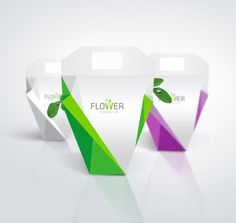 Packaging para transportar las plantas