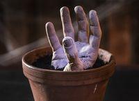 Hand made flowerpot - Halloween.de - Halloween decoration idea Zombie Hand-made flower pot - Halloween Ornaments, Holidays Halloween, Scary Halloween, Halloween Make Up, Halloween Party, Halloween Images, Outdoor Halloween, Manualidades Halloween, Adornos Halloween