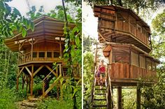 fincabellevista-sustainable-treehouse-community-designboom06