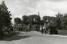 skilpaad en tsjerketoer 1954