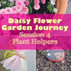 Hello Girl Scout Volunteers!  Today we are continuing on with the Daisy Flower Garden Journey with  session 4!  Last session our focus was on the parts of a flower. The theme of this  session was all about our plant helpers... aka bees, butterflies, ladybugs,  and worms! In case you missed the previous sessions they can be found  below...  Session 3  Session 2  Session 1  Start up Activity: (5-10 mins)  Record their seedlings by drawing a picture in their notebooks.  Pg. 61 or pg. 62 from…