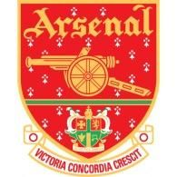 coyg arsenal arsenal One long wait one long night Arsenal Fc, Football Team Logos, Football Kits, Arsenal Football, Instagram Users, Instagram Posts, Clothes Pictures, Great Team, Arsenal F.c.