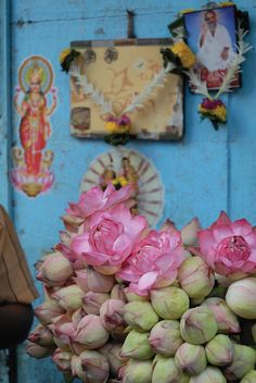 India--lotus flowers and buds on sale for offering by worshippers at nearby temple Kitsch, Namaste, Mother India, India Colors, India Travel, Incredible India, Indian Art, Beautiful World, Beautiful Places