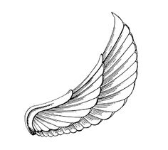egyptian wings - Google Search