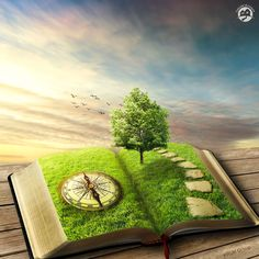 Find Illustration Magic Opened Book Covered Grass stock images in HD and millions of other royalty-free stock photos, illustrations and vectors in the Shutterstock collection. Thousands of new, high-quality pictures added every day. Modern Philosophy, What Is My Life, Tarot Gratis, Magic Book, Open Book, Fantasy Landscape, Life Purpose, Fantasy World, Belle Photo