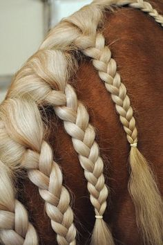 15 Horse Hair Braiding Ideas & Inspiration | Central Steel Build
