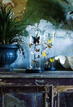 Butterflies, Glasglocke mit Schmetterlinge