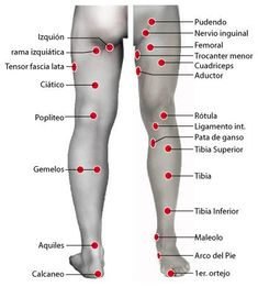 Acupressure More Effective Than Physical Therapy - Acupuncture Hut Cupping Therapy, Massage Therapy, Ear Reflexology, Medical Anatomy, Massage Techniques, Traditional Chinese Medicine, Qigong, Yoga Routine, Alternative Medicine
