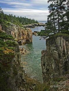Acadia Shoreline - Maine