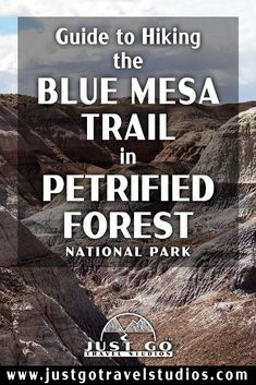 The Blue Mesa Trail in Petrified Forest National Park is a fantastic short hike. Our blog on this great hike in Petrified Forest will help you know what to do and what to expect while you are out on your hike! Petrified Forest National Park, Arizona Travel, 50 States, Just Go, Trail, National Parks, Hiking, Places, Blog