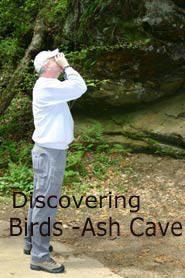 Bird Watching Ohio Guide-Hocking Valley Birding Trail