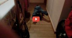 #Vídeo para #Rir | #Bebé Faz Corrida Com O Caixote Do Lixo E Cai Por Cima Dele  Comente e Partilhe, Faça Alguém Feliz :)  NR #Entertain | O Melhor Do #Entretenimento