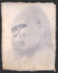 """This post was originally posted at LJ """"Seeking Beauty"""" ©Victor Koulbak *** ***. Silverpoint, Mark Rothko, Art Drawings, Sculptures, Poster, Face, Painting, Monkeys, Animaux"""