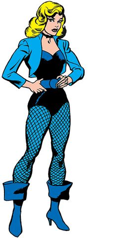 Black Canary - DC Comics - The 1960s - Character profile - Justice Society - Writeups.org Ted Knight, The Ronettes, Justice Society Of America, Arrow Oliver, Detective Agency, Character Profile, Tough Girl, Martial Artist, Black Canary