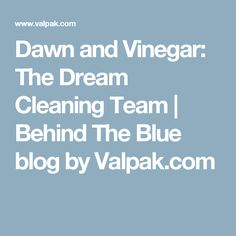 Dawn and Vinegar: The Dream Cleaning Team | Behind The Blue blog by Valpak.com