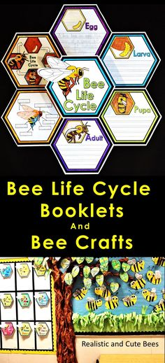 Honey Bee Life Cycles :: Bee Crafts :: Bee Activities Bee Life Cycles and Research Writing A versati Honey Bee Life Cycle, Cycle For Kids, Insect Activities, Sequencing Activities, Types Of Bees, Science Writing, Mason Bees, Research Writing, Bees And Wasps