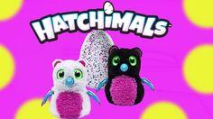 NEW Hatchimals Magical Giant Surprise EGG hatching animals  What's inside? #hatchimalsvideo #hatchamils