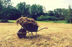 schubkarre bio.gut südburgenland Wheelbarrow, Austria, Garden Tools, Graz, Landscape, Nature, Yard Tools