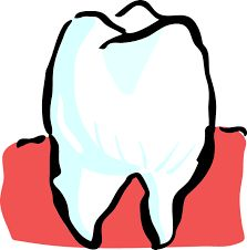 Have you ever suffered from a toothache? If not then you might have seen a relative or a friend who has experienced this problem. The main causes of a toothache include loose filling, cavities, an abscess, a cracked tooth or even a sinus. Dental Art, Medical Dental, Dental Health, Oral Health, Dental Surgery, Dental Implants, Tooth Pain Remedies, Cracked Tooth, Teeth Whitening Remedies