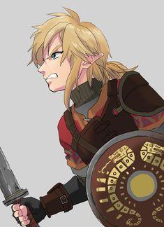 Hyrule Warriors Link, Super Manga, Zelda Video Games, Botw Zelda, Kid Icarus, Link Art, Hey Dude, Legend Of Zelda Breath, Link Zelda